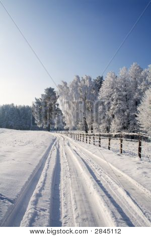 Winter Scene In Early Morning Lights