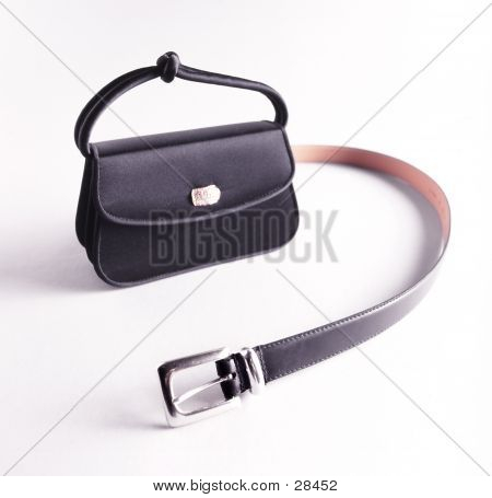 Bag And Belt 02