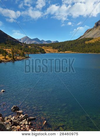 Coniferous wood and freakish mountains on coast of lake Tioga in Yosemite national park