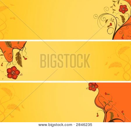 Flower Banner With Wave