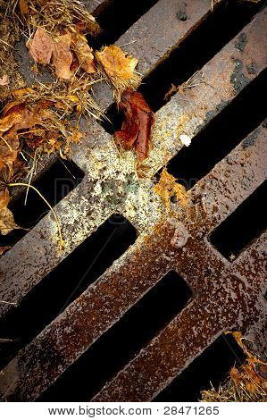 Abstract Sewer In Fall