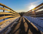A Sunlit Winter Walkway In St Albert poster