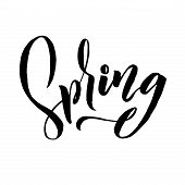 Spring. Trendy Script Lettering Design Spring. - Vector poster