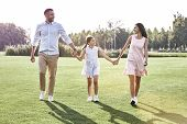 Family Walk. Family Of Three Walking On Grassy Field Looking At poster