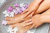 Spa Treatment And Product For Female Feet And Foot Spa. Foot Bath In Bowl With Tropical Flowers, Tha poster