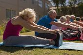 Side view of group of active senior people exercising in the park with senior woman looking at the c poster