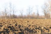 Freshly Plowed Land. A Brownish Relief Texture. Loose Soil For Planting. Agriculture. Agricultural B poster