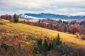 Late Autumn In Mountains. Meadow With Weathered Grass And Trees In Fall Color. Distant Hills In Snow poster