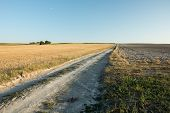 Long Gravel Road Through The Stubble And Plowed Field, Horizon And Cloudless Blue Sky poster