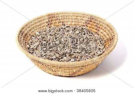 Sunflower Seed Harvest