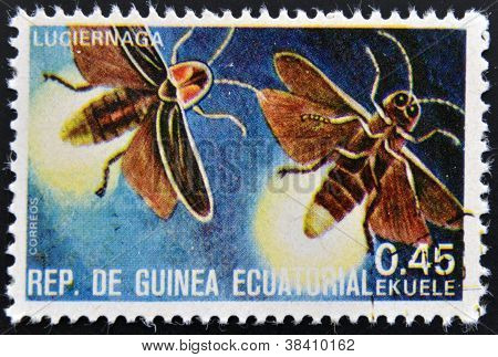 EQUATORIAL GUINEA - CIRCA 1973: stamp printed in Guinea dedicated to insects shows firefly circa 197