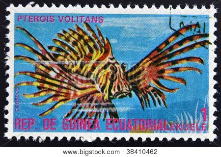 EQUATORIAL GUINEA - CIRCA 1974: A stamp printed in Guinea Ecuatorial dedicated to exotic fish shows