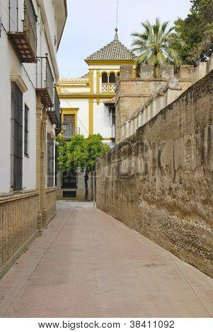 Street nexto to urban wall in Seville