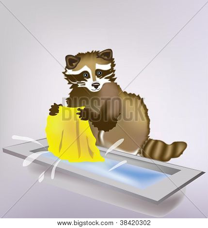 Vector raccoon