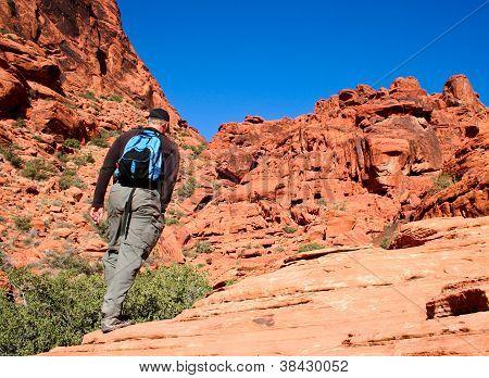 Active Senior Man Hiking Desert Canyon