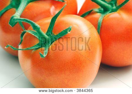Tomato_02