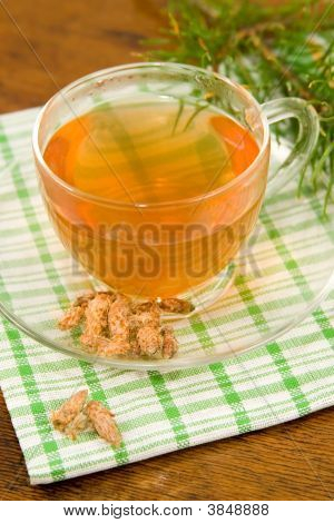 Medicinal Decoction With Pine Buds