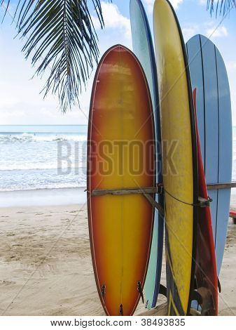 Pranchas de surf na praia de Kuta Bali