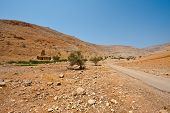 picture of samaria  - Ruins in Sand Hills of Samaria Israel - JPG