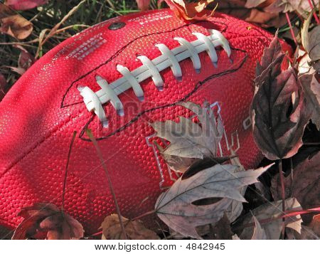 Red Football In Brown Leaves