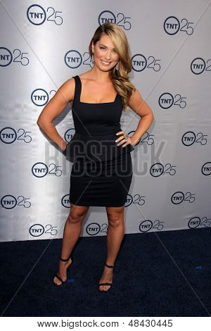 LOS ANGELES - JUL 24:  Briga Heelan arrives at TNT's 25th Anniversary Party at the Beverly Hilton Hotel on July 24, 2013 in Beverly Hills, CA