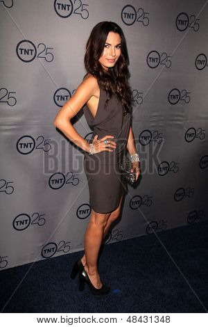 LOS ANGELES - JUL 24:  Nadine Velazquez arrives at TNT's 25th Anniversary Party at the Beverly Hilton Hotel on July 24, 2013 in Beverly Hills, CA