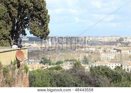 Sleeping On A Parapet In Rome