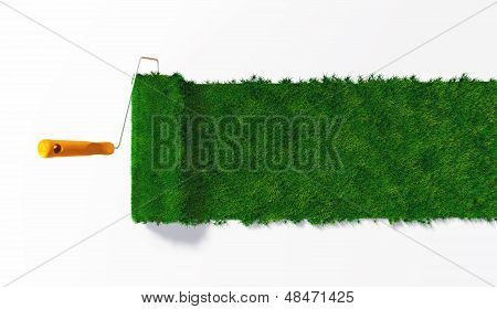 Top View Of A Grassy Paint Roller