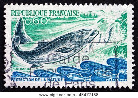 Postage Stamp France 1972 Salmon, Salmo Salar, Fish