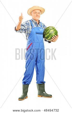 Full length portrait of a smiling farmer holding a watermelon and giving thumb up isolated on white background