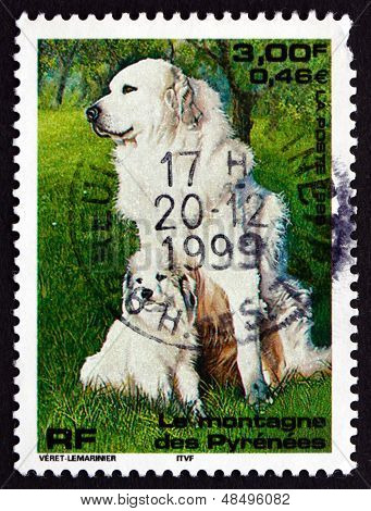 Postage Stamp France 1999 Pyrenean Mountain Dog, Pet