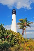 stock photo of atlantic ocean beach  - Cape Florida Light lighthouse with Atlantic Ocean and palm tree at beach in Miami with blue sky and cloud - JPG