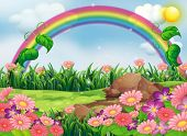 pic of hilltop  - Illustration of an enchanting garden with a rainbow - JPG