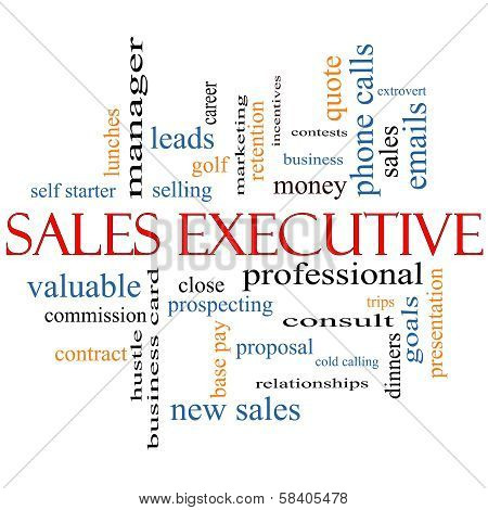 Sales Executive Word Cloud Concept