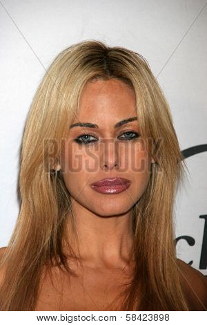 LOS ANGELES - DECEMBER 20: Shauna Sand at the Bench Warmer Trading Cards' Holiday Party and Toy Drive on December 20, 2006 at Area, Los Angeles, CA.