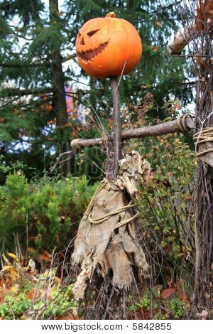 Happy Halloween Scarecrow