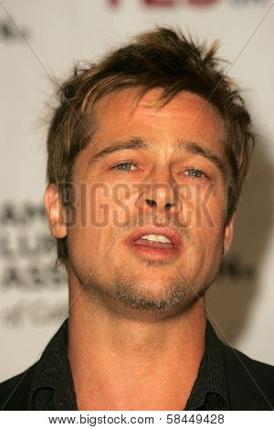 LOS ANGELES - NOVEMBER 11:  Brad Pitt at Proposition 87 Press Conference in a Private Location November 11, 2006 in Los Angeles, CA.