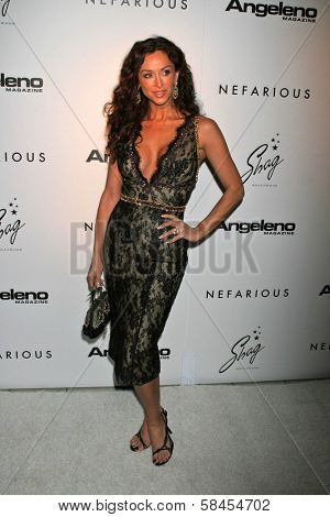 HOLLYWOOD - DECEMBER 11: Sofia Milos at the Nefarious Fine Jewelry Spring 2007 Collection and Holiday Party on December 11, 2006 at Shag, Hollywood, CA.