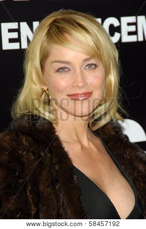 HOLLYWOOD - DECEMBER 13: Sharon Stone at the world premiere of