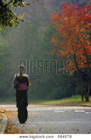 Autumn Walk - 2