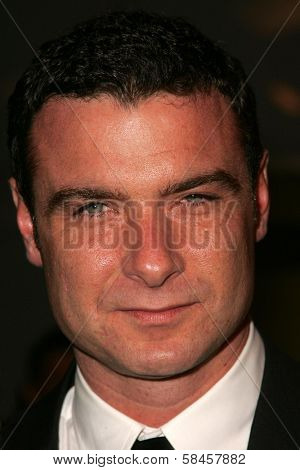HOLLYWOOD - DECEMBER 13: Liev Schreiber at the Los Angeles Premiere of