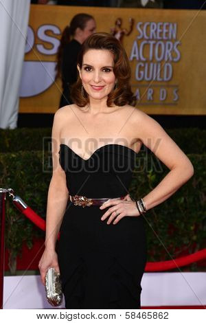 Tina Fey at the 19th Annual Screen Actors Guild Awards Arrivals, Shrine Auditorium, Los Angeles, CA 01-27-13