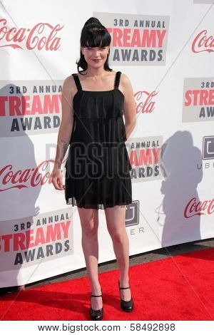 Pauley Perrette at the 3rd Annual Streamy Awards, Hollywood Palladium, Hollywood, CA 02-17-13