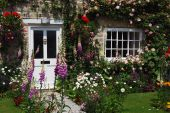 image of english cottage garden  - A postcard view of English cottage garden - JPG