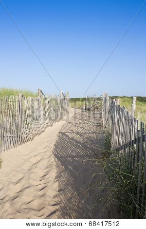 Path leading to beach on Cape Cod