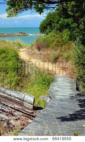The Track To The Beach At Ngaio Bay, Abel Tasman National Park.