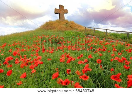 cross on hill with red poppies