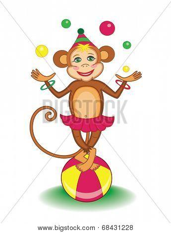 cute circus marmoset (vector illustration for children's books)