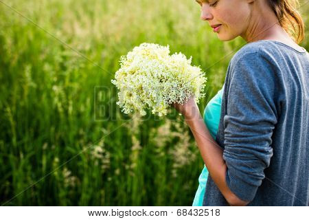 Young woman picking elderflower to make infusion/syrup at home