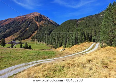 Valley in the mountains of Austria. The dirt path winds between yellowed fields. Sunny autumn day